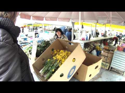 Торговля краснокнижными растениями в г. Харькове-4