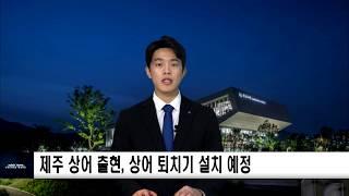 제주 상어 출현, 상어 퇴치기 설치 예정 신동아방송뉴스…