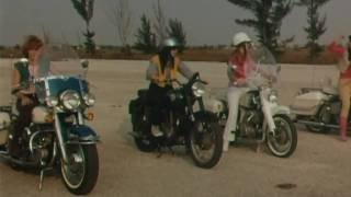 Silverfish - Vitriola (she-devils on wheels)
