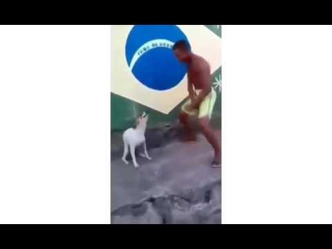 video lucu anjing sama majikan joget bersama