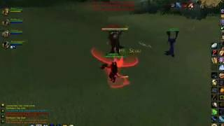 wow paladin 80 pvp owned