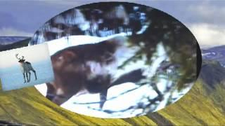 Ямал - Бованенково-Северный край(Песня Игорь Корнилов Северный край., 2012-09-05T14:16:38.000Z)