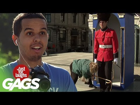 British Royal Guard Loses his Patience with Granny - Just For Laughs Gags