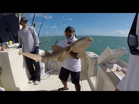 First Ever SHARK Fishing trip!!! (ft. Monster Mike & BlacktipH) Miami, Florida
