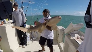 First Ever SHARK Fishing trip!!! (ft. Monster Mike & BlacktipH) Miami, Florida 10/22/15