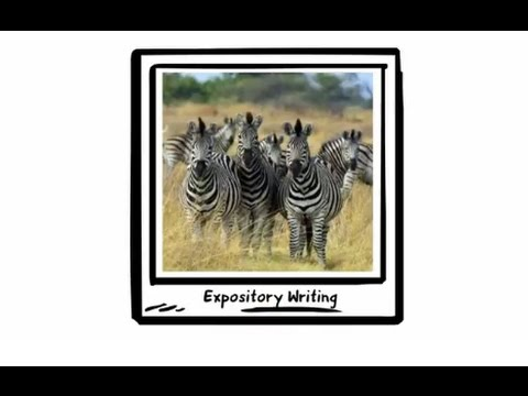 Expository Writing (Primary)