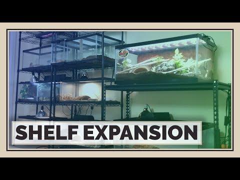 Building New Shelves! What Shelving do I use for Reptiles?