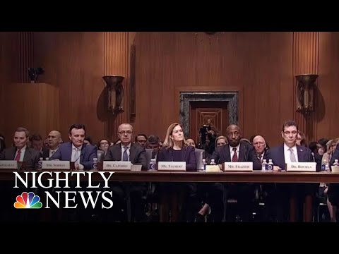 Senators Grill Big Pharma Executives About Soaring Drug Prices | NBC Nightly News