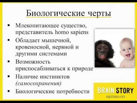 2.1.2 Человек как биологическое существо. ОГЭ по Обществознанию