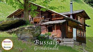 Wandern in der Schweiz - Bussalp - Grindelwald - Berner Oberland