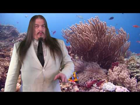 How Paleontology Disproves Noah