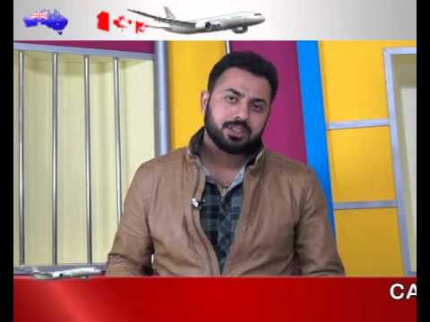 Top Five tourist visa consultant in Mansa |  immigration company in Punjab