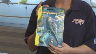 How To Choose Toys For Budgie Birds