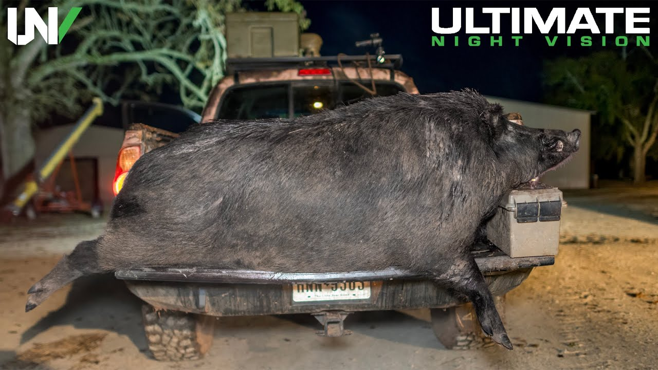 A Hunt Like This May Never Happen Again   Hogzilla Found In Texas