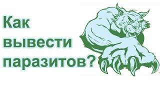 арго от паразитов у детей