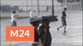 Смотреть видео Синоптики рассказали, когда в Москве закончится дождь - Москва 24 онлайн