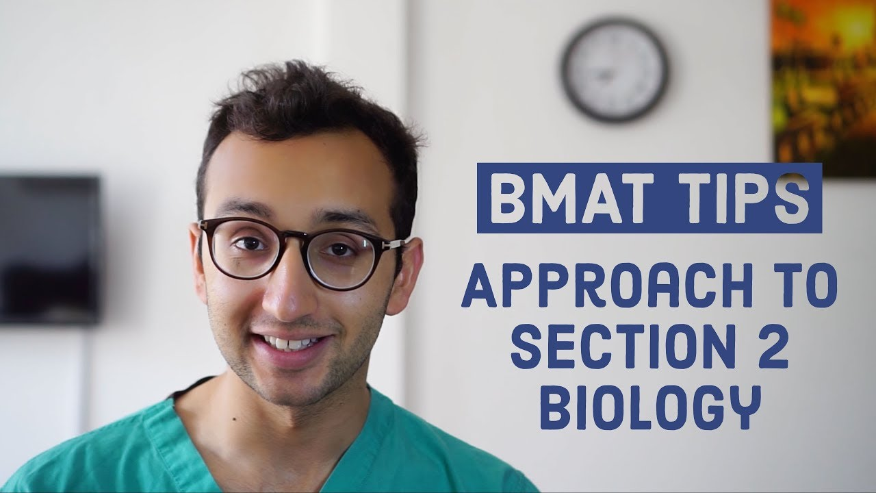 Bmat example essays for college