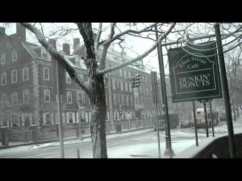 Snow Day in Boston #Harvard Square, Cambridge, MA