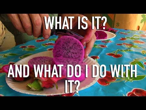 How To Pick and Eat Dragon Fruit (Pitaya)
