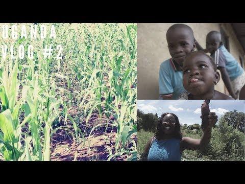 VILLAGE LIFE /  FAMILY TAKEOVER | UGANDA TRAVEL VLOG #2