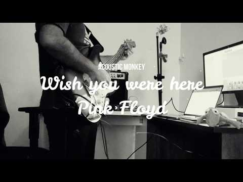 Wish you were here | Pink Floyd | Guitar Cover | Tabs \u0026 Chords in description