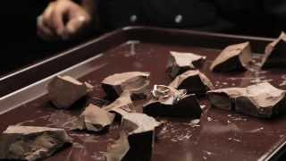 Le Vian Chocolate Diamonds TV Commercial – Behind the Scenes