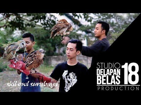 Skill Komunitas Burung Hantu Surabaya Sore Hari! KEREN !