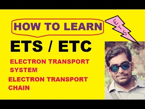 HOW TO LEARN ETS (ELECTRON TRANSPORT CHAIN)