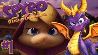 THE BEST NEW OLD GAME!    Spyro Year Of The Dragon Part 1 (Spyro Reignited Trilogy PS4 Gameplay)