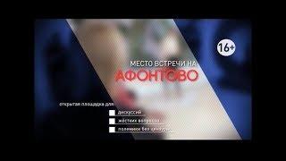 Как решить проблему бездомных животных в Красноярске