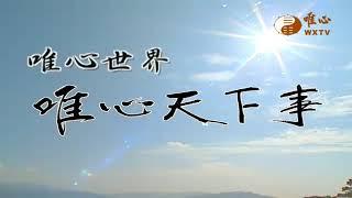 四神章 元神 忌神 仇神 用神【唯心天下事3040】| WXTV唯心電視台