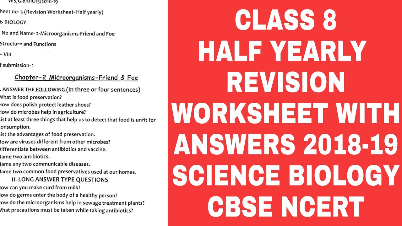 medium resolution of CLASS 8 Science Biology HALF YEARLY REVISION WORKSHEET WITH ANSWERS  CBSE  BloomLearnscienceworksheet - YouTube