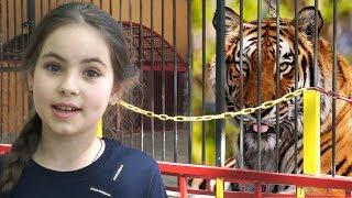 Забавные Животные в ЗООПАРКЕ. Видео для детей