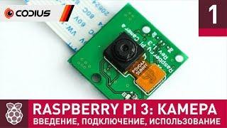 Raspberry Pi 3: Камера (#1) – введение, подключение, базовые утилиты, TimeLapse, библиотека PiCamera