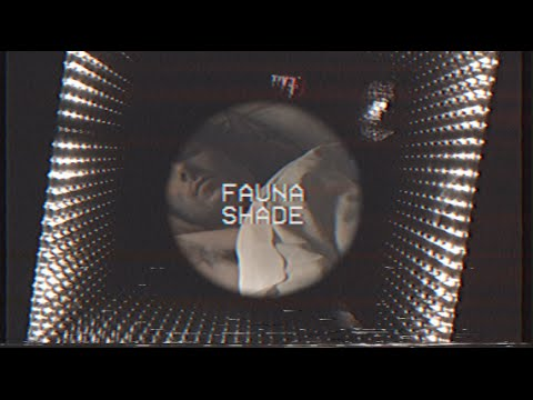 Fauna Shade - Delirium (Shade Tour '15)