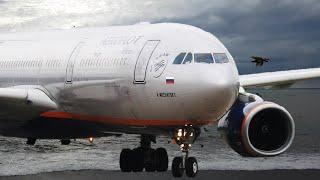 Аэрофлот Полет Сочи-Москва на Airbus A330-300 Рейс SU1117