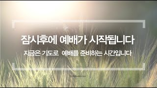 7-25-20 남플 토요새벽예배(대상29:10-20)