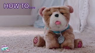 Little Live Pets - Rollie My Kissing Puppy | How to Care & Play!