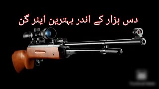 Best Airgun Under 10k || Artemis B3-3 || Lb600 || P1 Multipump || Review And Hunt
