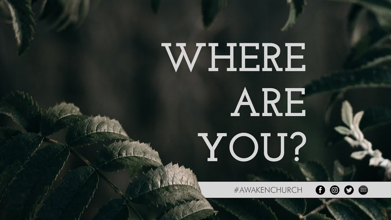 Where Are You? // Genesis 3