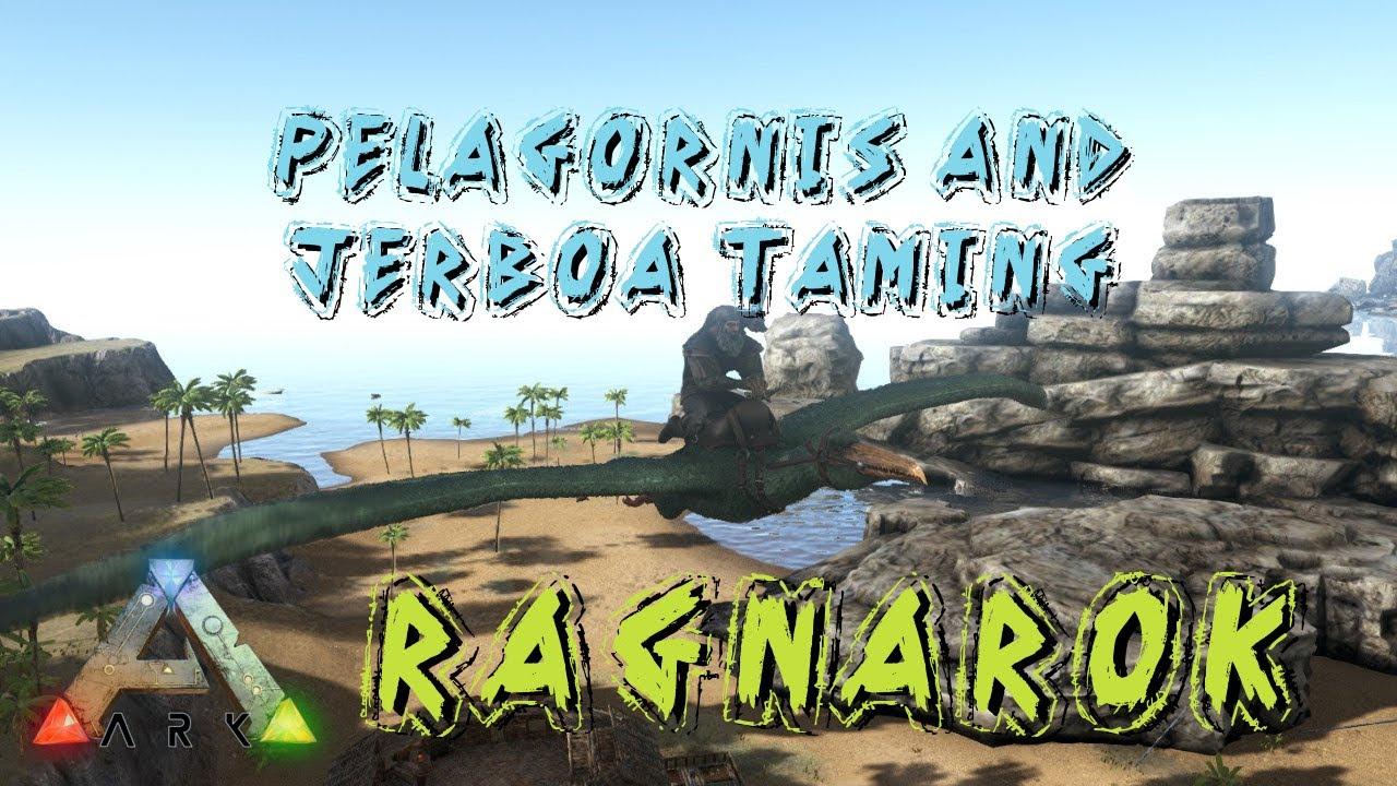 Images of Ragnarok Endless Island - #rock-cafe