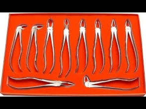 Dental Forceps Basics