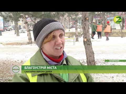 Телеканал Z: Новини Z - Комунальники турбуються про благоустрій міста - 22.01.2019