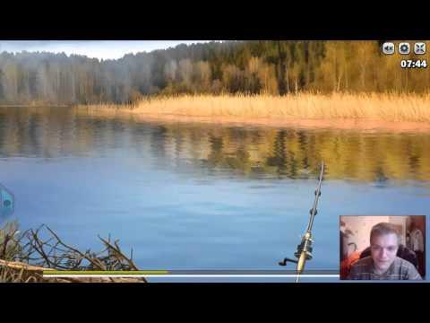 на что ловить синца в просто рыбалка