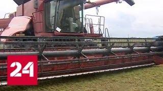 День поля: в Приморье открылась большая сельскохозяйственная выставка - Россия 24