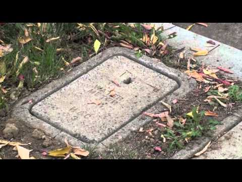 How To Turn Off the Water To My House - Dutton Plumbing | North Los Angeles  & Ventura Counties