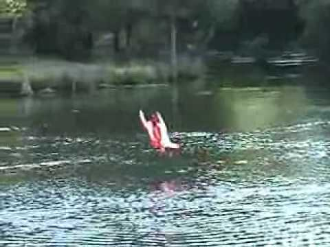 RC car, boat, plane. Hydrofoam. - YouTube