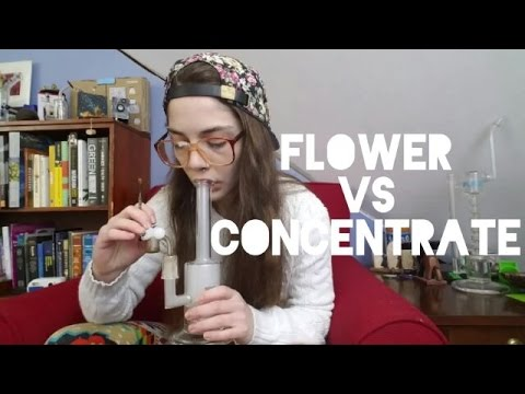 Arcata Trainwreck | Flower VS Concentrate