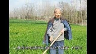 河南南阳:农村74岁大爷种地干活为啥越干越想干?小伙听完很感动