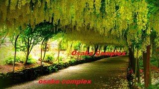 Chung cư bộ Công An - Osaka Complex- Góc Nhật Bản tại Hà Nội - Lh 0936 04 5500